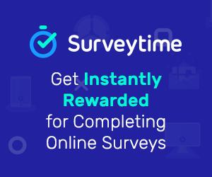 learnerscoach survey 300X250