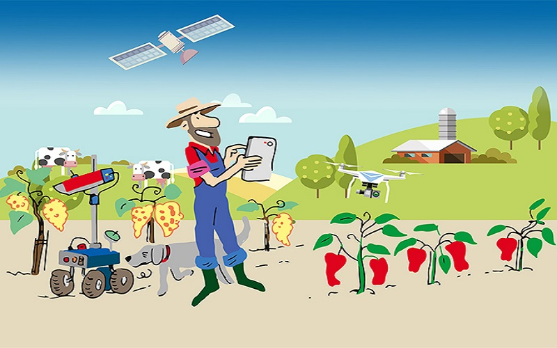 The Best ICT Platforms that Promotes Agribusiness in Kenya