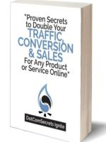 Traffic Conversion and Sales